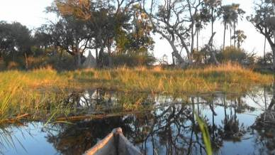 Mokoro Pic 2