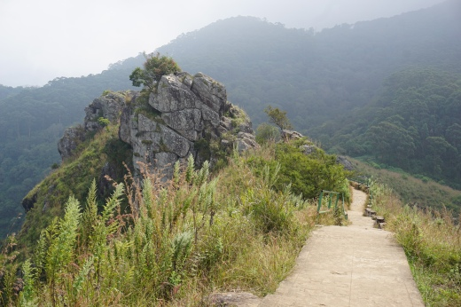 Needle Rock viewpoint path