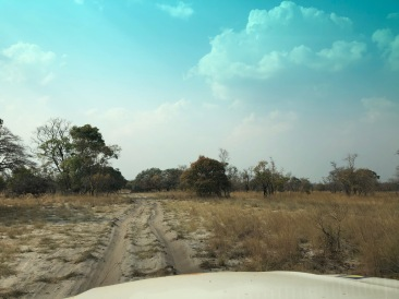 Very sandy roads